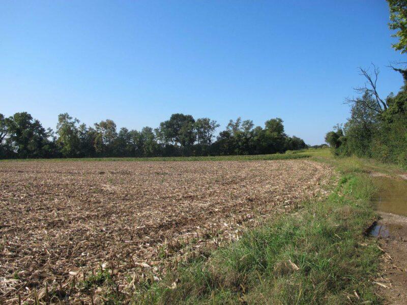 Sclaunicco, terreno agricolo Lestizza